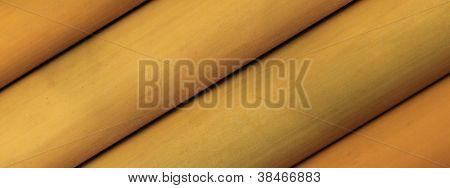 Bamboo Angle