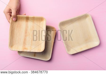 Betel Palm Leaf Plate (biodegradable Plate, Compostable Plate Or Eco Friendly Disposable Plate) Hold