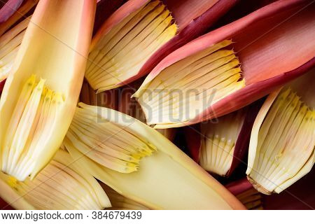 Banana Flowers, Edible Plant In Southeast Asian Cuisine, Food Ingredients In Salad, Curry Or Soup