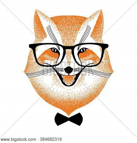 Face Smart Red Fox In Glasses And Bow-tie. Fox Hipster Style. Decorative Portrait Sly Fox. Sketch An