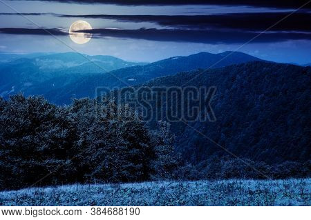 Mountain Landscape At Night. Trees On The Meadow In Dry Grass In Full Moon Light. Ridge In The Dista