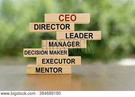 Wooden Cubes With Ceo Concept. Description Of The Image And Role Of The Ceo. Financial, Marketing An