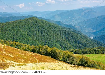 Mountain Meadow On A Sunny Autumn Day. Dry Grass On The Hills. Mountain Range Rolling In To The Hori