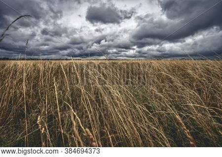 A Dried Up Meadow With Dramatic Storm Clouds
