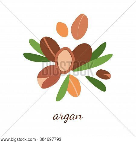 Illustration With Argan Oil. Argan Berries With Leaves. Modern Abstract Design For Background, Packa