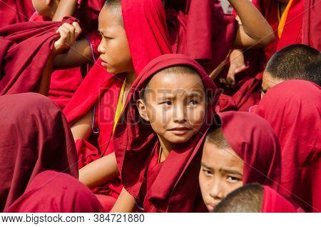 Bodh Gaya Bihar April 30th 2018: Child Tibetan Lamas Gatherd During Prayer Time At Bodh Gaya Bihar I