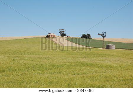 Old Farm South Australia
