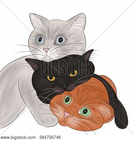 Hand-draw Illustration Of Three Different Cats Hugging Each Other