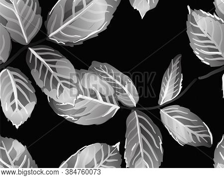 Repeated Spring Peony Wallpaper. Rose Leaves Seamless Pattern. Monochrome And Greyscale Summer Texti