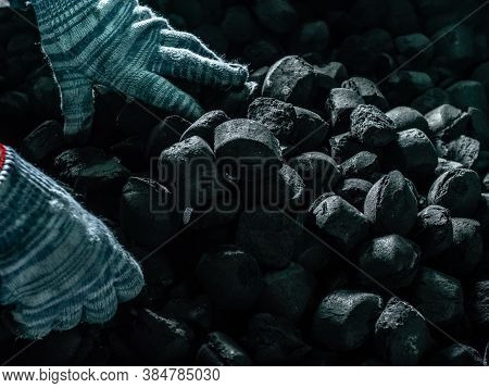 Coal Mining - Man's Hands In Gloves Holding Natural Black Coal For Back. Picture Idea About Coal Min