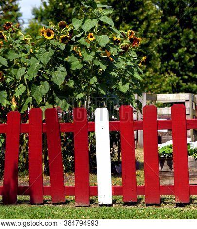 Red Wooden Fence Around Garden