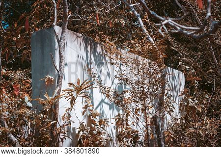 House Wall In Tropical Trees Outdoors At Summer Day