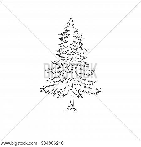 Single One Line Drawing Of Beauty Exotic Pine Tree For Home Art Wall Decor Poster. Decorative Pinus