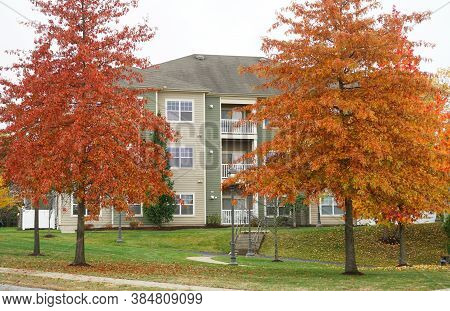 Red And Orange Autumn Trees In Front Of Houses In Residential Area