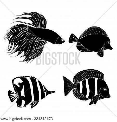 Set Of Black Silhouette Different Tropical Fish. Fish Rooster, Pennant Fish, Royal Angel. Marine Inh