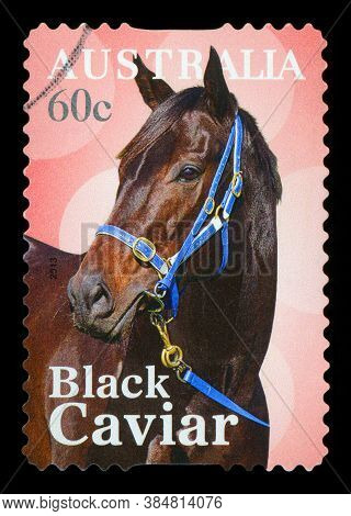 Australia - Circa 2013: A Stamp Printed In Australia Shows Black Caviar Horse, Circa 2013.