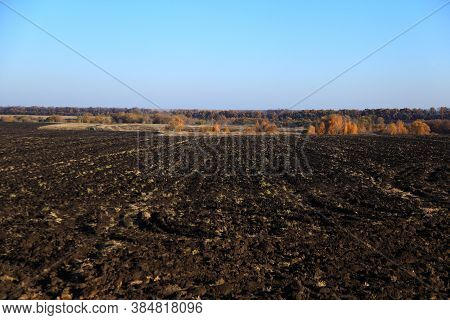 Agriculture Plowed Field. Dirt Soil Ground In Farm. Tillage Soil Prepared For Planting Crop. Landsca