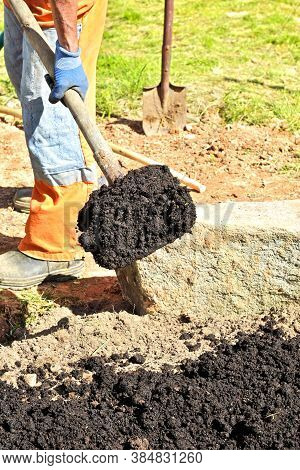 Man Farmer Digs The Soil With A Shovel In A Private Garden, Workers Loosen The Black Mud On The Farm