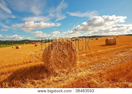 Scenic Landscape With Haybales