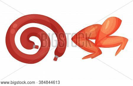 Meat Products With Chicken Wings And Sausage Vector Illustration