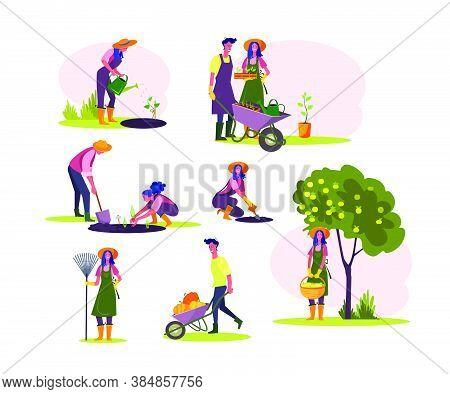 Work In Garden Set. Man And Woman Watering Seedling, Planting Trees, Picking Fruits, Harvesting. Peo