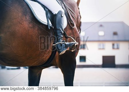Against The Background Of The Stable, A Rider In Black Boots With Spurs Rides A Bay Sports Racehorse