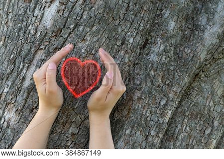 Girl Holds Her Hands In Protection Gesture For Saving Nature. Glowing Red Heart Between Young Girl H