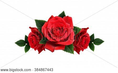 Rose Flower Background. Colorful Roses Flower. Roses Flower Bouquet. Garden Rose. Red Rose Pattern.