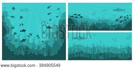 Sea Underwater Background. Deep Blue Water, Coral Reef And Underwater Plants With Fish. Silhouette O