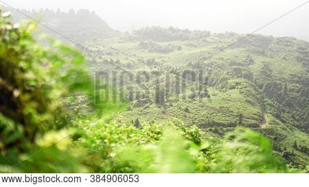 Green Glade In A Mountain Valley At Sunny Day