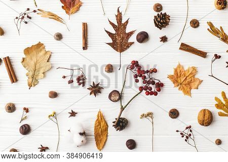 Autumn Flat Lay. Fall Leaves, Berries, Acorns, Walnuts, Cinnamon,anise , Cotton And Pine Cones On Wh