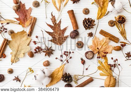 Autumnal Pattern With Natural Forest Details, Flat Lay. Autumn Leaves, Berries, Acorns, Walnuts, Cin