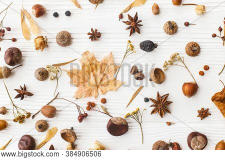 Autumnal Pattern With Nature Garden Details, Flat Lay. Autumn Leaves, Berries, Acorns, Nuts,anise, C