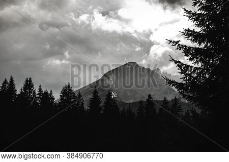 Mountain In The Fog On The Background Of A Coniferous Forest, Black And White Photo