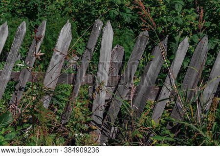 Old Crooked Wooden Fence Stands Diagonally Among Green Grass Against The Background Of Forest Bushes