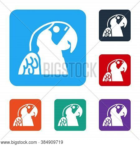 White Macaw Parrot Bird Animal Icon Isolated On White Background. Animal Symbol. Set Icons In Color