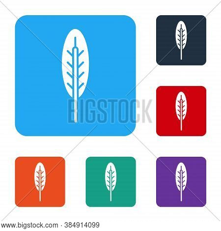 White Indian Feather Icon Isolated On White Background. Native American Ethnic Symbol Feather. Set I