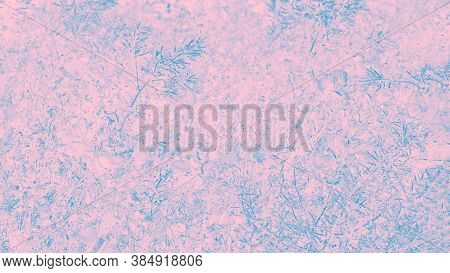 Floral Patchy Background, Pale Pink And Turquoise, Pastel. 16 On 9 Format
