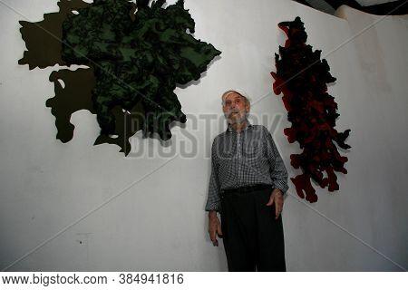 Nova Vicosa, Bahia / Brazil - October 27, 2008: Frans Krajcberg, Artist And Environmentalist, Is See