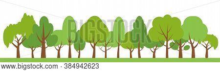 Green Trees Border Background. Ecology Natural Landscape. Different Shapes Oak, Birch. Flat Cartoon