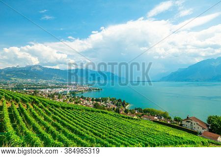 Aerial Landscape Between Terraced Vineyards Of Lavaux From Lutry And Cully. Vevey City, Lake Geneva