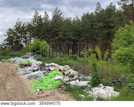 Garbage Dump In The Forest. Environmental Pollution. People Illegally Throw Garbage In The Forest. C