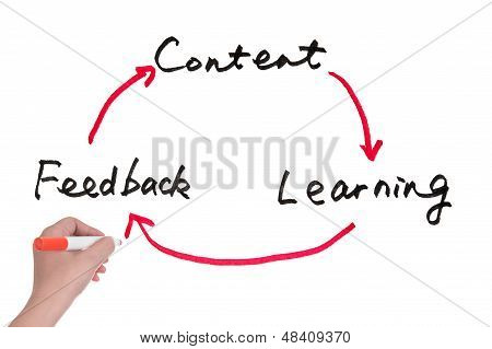 Content, Learning And Feedback