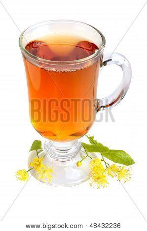 Linden Tea
