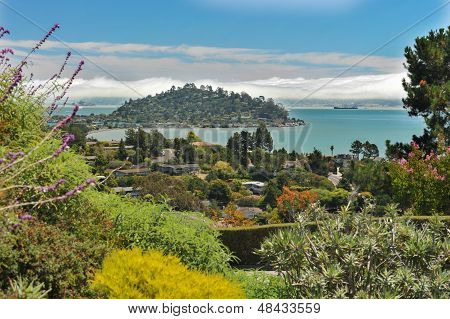 View Of Tiburon, Belvedere And San Francisco