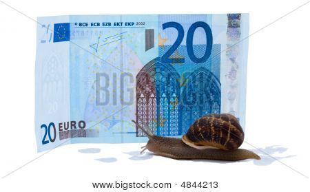 The snail creep to 20 EURO. Isolated over white poster