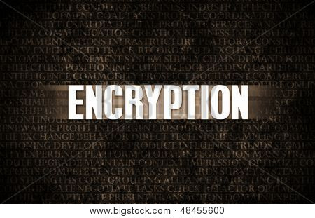 Encryption in Business as Motivation in Stone Wall