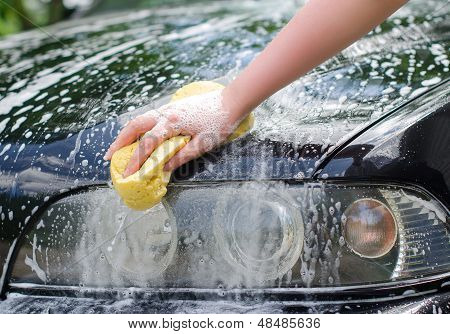 Female Hand With Yellow Sponge Washing Car