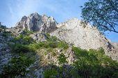 Turda Gorges National Park in Transylvania - Romania poster