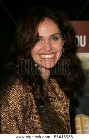LOS ANGELES - NOVEMBER 27: Amy Brenneman at the premiere of